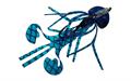 Gulf Bug #04